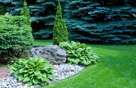 San Diego, CA. Landscaping Contractor Insurance